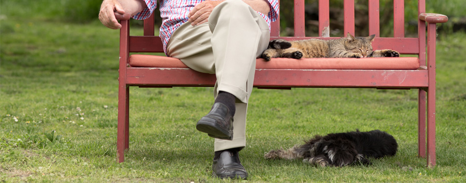 best shoes for the elderly
