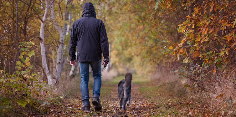 man and dog taking a walk