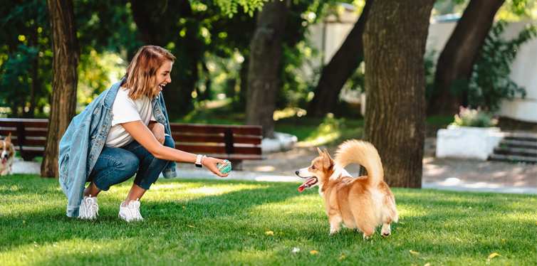 woman playing with a dog in the park