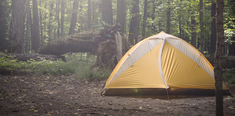a camping tent in the woods