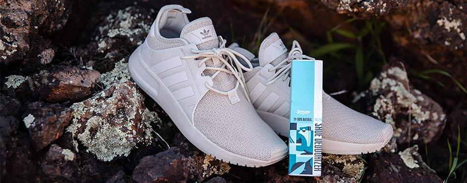 Shoe Deodorizer