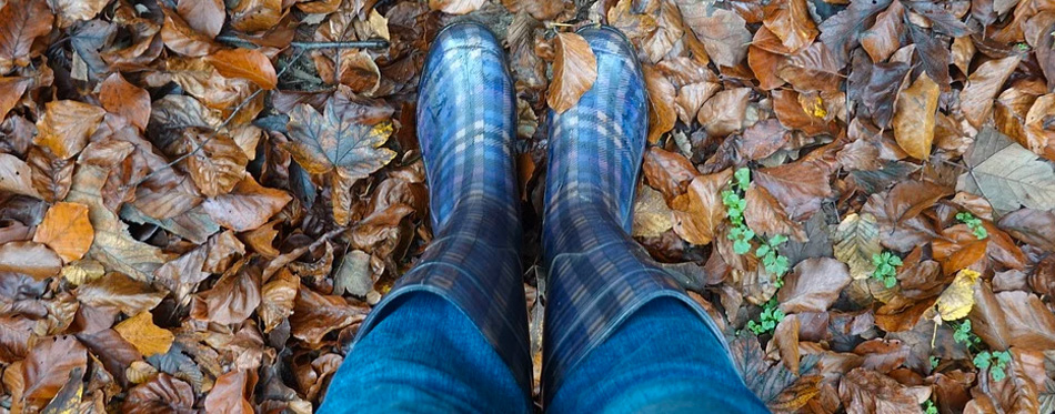 autumn leaves and muck boots