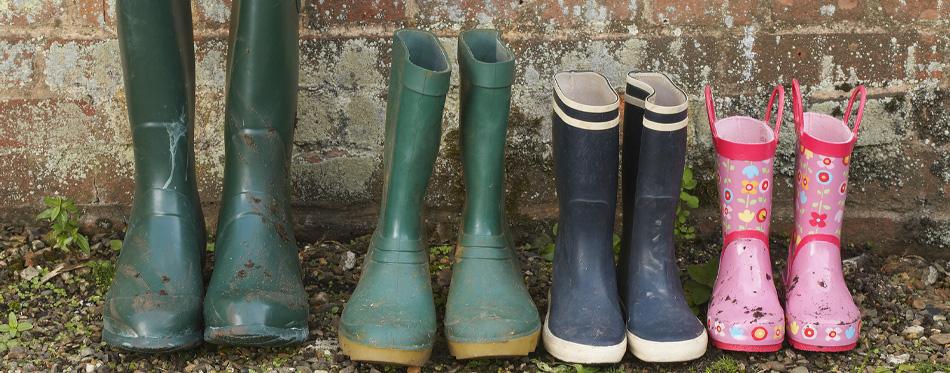 various wellington boots