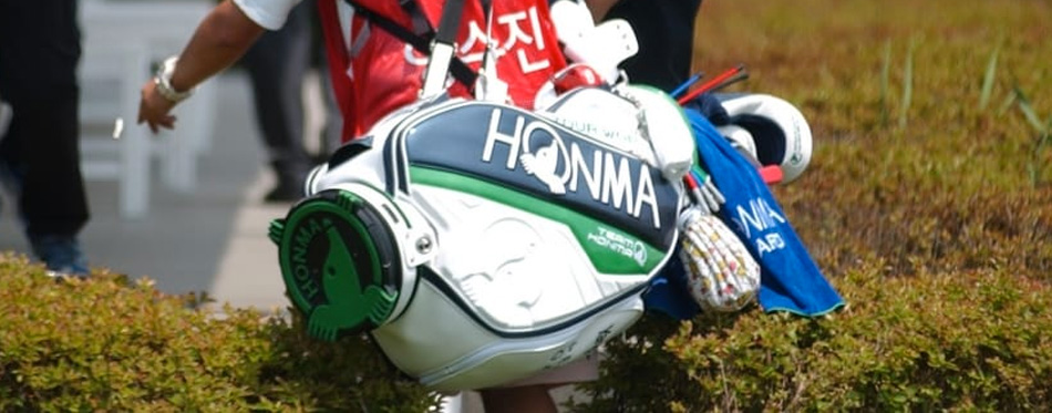 stylish golf bag