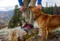 Danner Trail 2650 Mid Gore-Tex